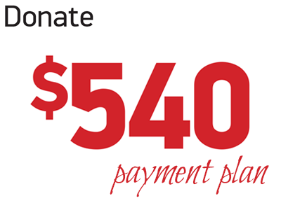 Donate 540 (payment plan)