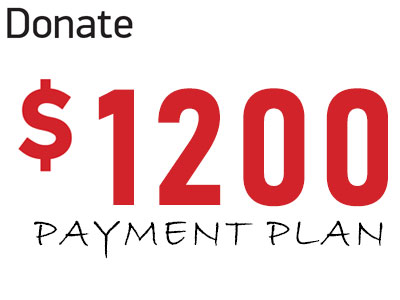 Donate 1800 (payment plan)